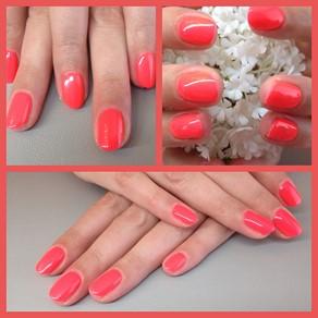 Lange tijd mooie nagels met gel lak